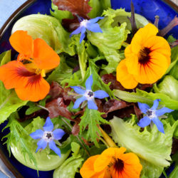 Flower Power Salad