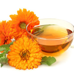 Calendula Wound Serum Recipe