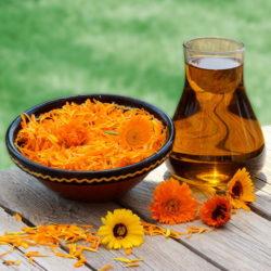 Benefits of Growing Marigolds in Your Garden