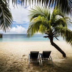Caribbean Breeze Diffuser Blend Recipe