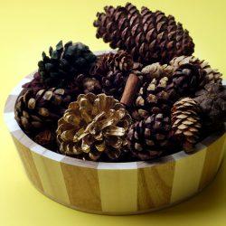 Try Making Cinnamon Pinecones