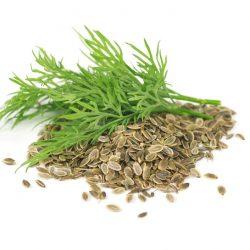 Dill Seed Tea