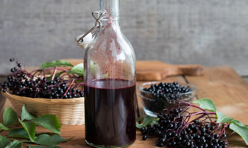 Elderberry Cold Syrup Recipe