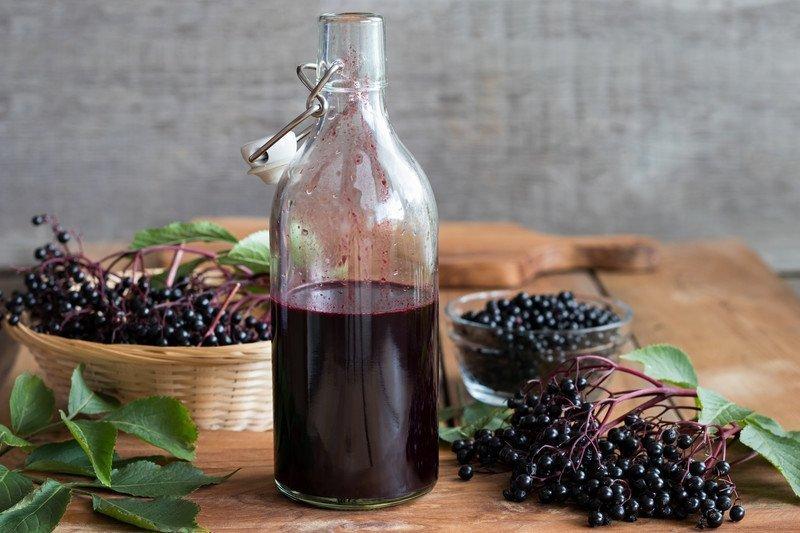 Elderberry Cold Syrup Recipe
