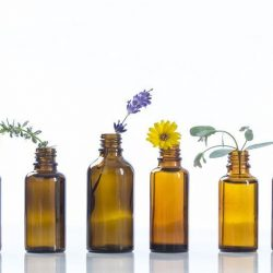 Reading an Essential Oil Bottle's Label