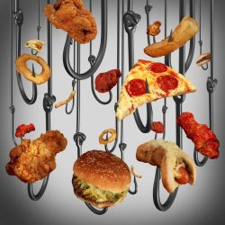How to Cut the Food Cravings in the New Year
