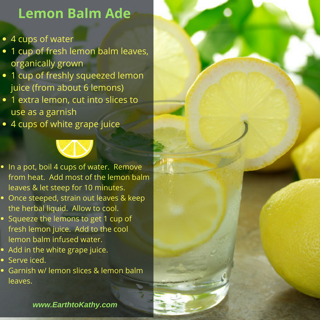 Lemon Balm Ade Recipe
