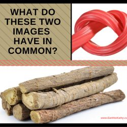 What do these 2 Images Have In Common??