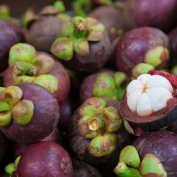 What is a Mangosteen?