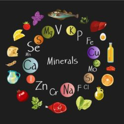 What are Trace Minerals?