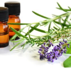 Top 7 Questions Answered for People New to Using Essential Oils