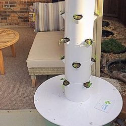 Starting an Easy at Home Hydroponic Garden with a Tower Garden